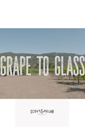 Grape to Glass Poster